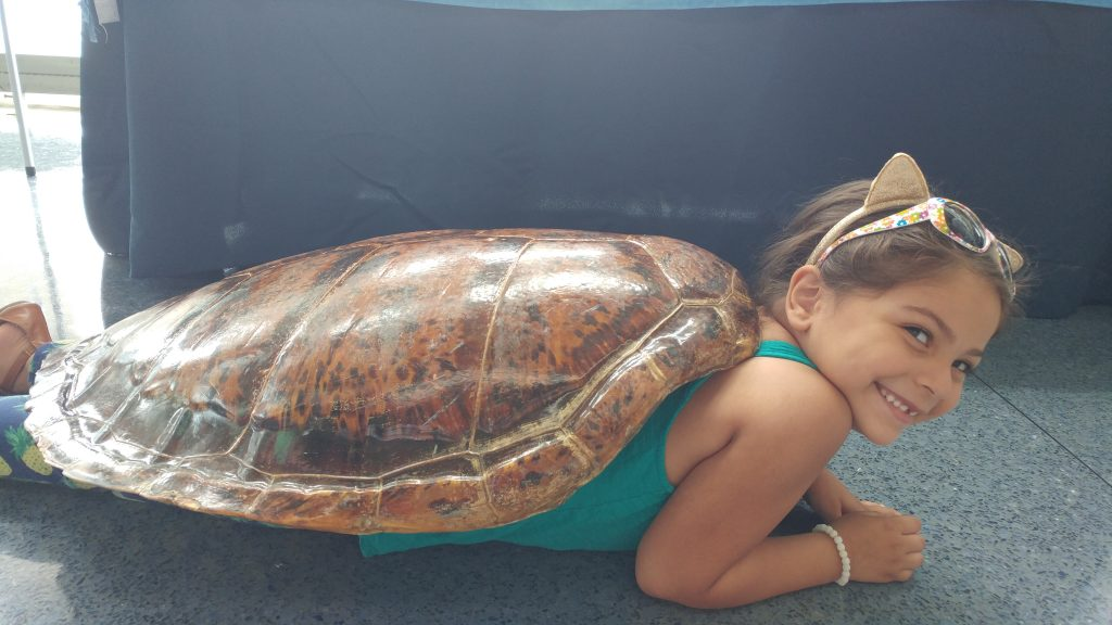 6-year-old Evian Flores and her family visiting the SC Aquarium from Boston.